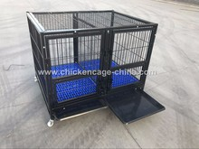 Heavy Duty Folding Modular Dog Cage With Plastic Floor Hot Selling In US (Best Quality)
