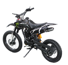 Cheap customize 150cc 250cc pit bike engine dirt bike automatic