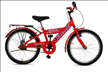 Daisy Girls Bicycle 20 inch