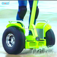 Outdoor 2016 motorcycle Playing 2 Wheel Self-Balancing Electronic scooter Chariot personal electric vehicle