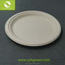 Pizza Shaped Biodegradable Sugarcane Plate