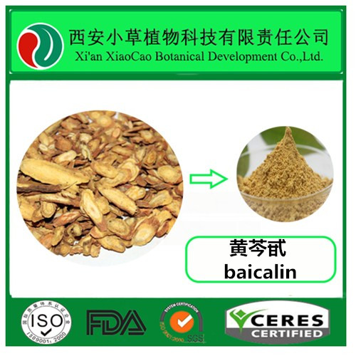 high quality pure Scutellaria baicalensis root extract