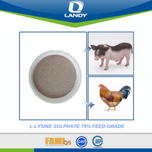 HIGH QUALITY FEED GRADE L LYSINE SULPHATE 70%