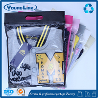 Professional Manufactory garment clothing PVC clear plastic handle bags