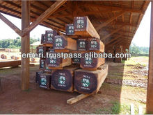 Best Quality Timber Raw Materials Wood Pure Logs