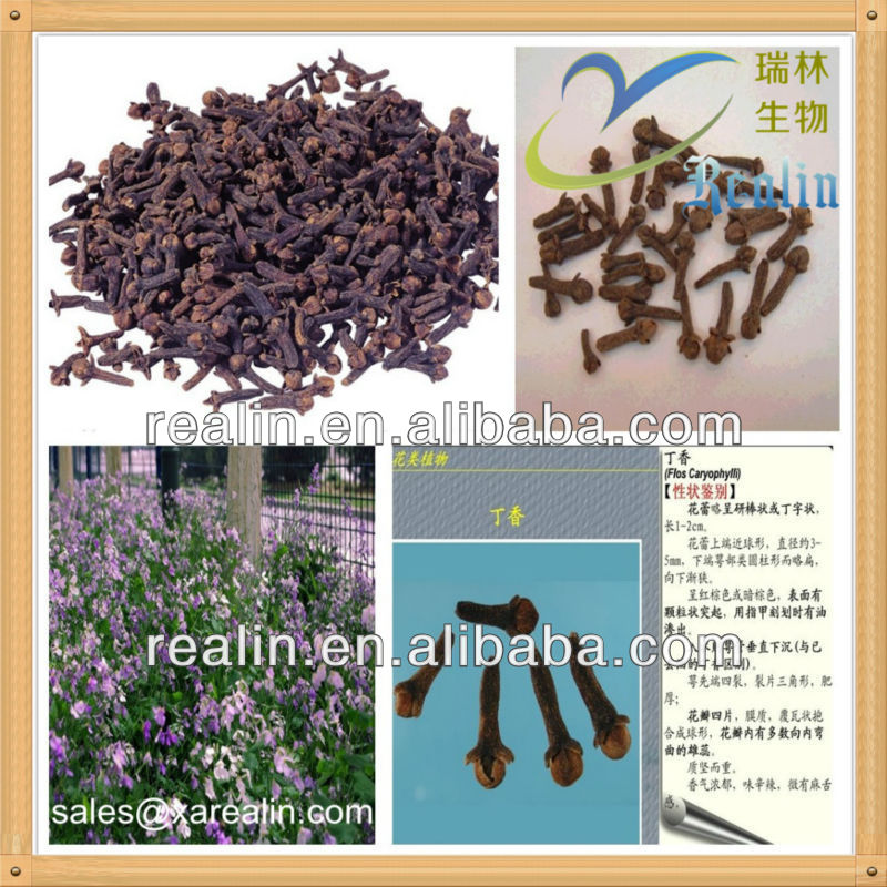 Natural cloves extract powder 20 % isoflavones