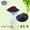 Organic,KOSHER,ISO,GMP, FDAl Acai Berry Extract 5%-70%Anthocyanin/acai berry extract