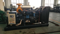 180KW emergency marine genset with Steyr engine