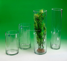 Tall cylinder clear glass vase