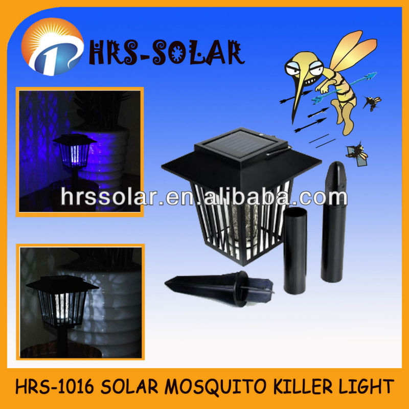 solar best insect killer,getting rid of bed bugs,ant killer