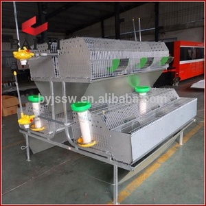 Trade Assurance Automatic Feed Trough Rabbit Cage System