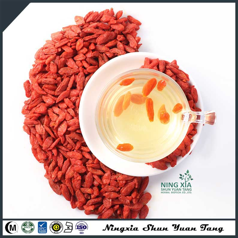 china dried fruit factory dried goji berry