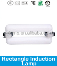 UL/EMC Low Frequency Magnetic Induction Light /40W-400W