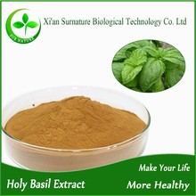 High quality Pure Holy basil extract,Basil Leaves ,tulsi leaves
