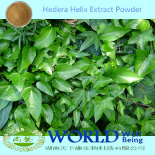 Hot Selling 100% Natural Hedera Helix Leaf Extract/Ivy Leaf Extract/Hedera Helix Extract