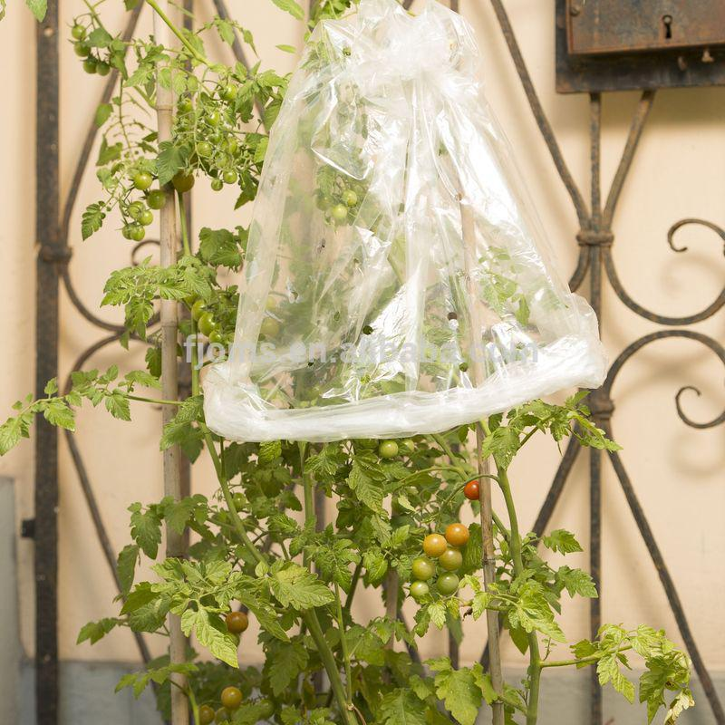 UV-stabilized tomato growing covers sleeves with ties