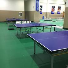 Best selling multi colors table-tennis flooring / table tennis floor mat court cover