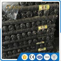 Anping Cold Galvanized Hexagonal Chicken Wire
