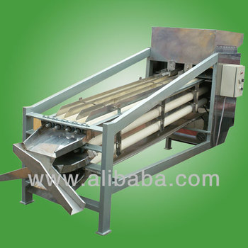 Cashew Processing Machine Cashew Machine India