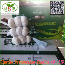 4.5cm-5.cm,5.cm-6cm,6cm up Pure white garlic/white garlic /organic garlic export