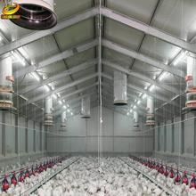 Export to Philippines close broiler/layer chicken house/farm broiler farm house design low cost steel poultry shed