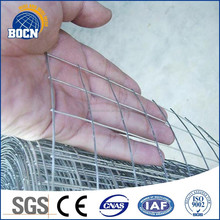 small bird cage wire mesh