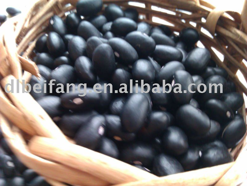 Organic Black Kidney Bean/Black Turtle Bean( 2011 crop, Heilongjiang origin, HPS)