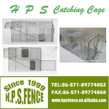 Alibaba China Hot Sale Electro Galvanized Welded Mouse Trap Cages
