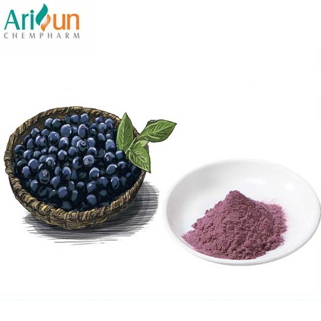 Acai Berry Extract 20 1 , Acai Berry Extract 4:1 10:1 Ratio Powder