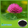 100% Natural TCM herb extract trifolium pratense Leguminosae extract 8% 20% 40% total Isoflavone red clover extract