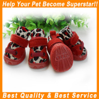 JML Wholesale low price with Strap outdoor sports pet dog shoe