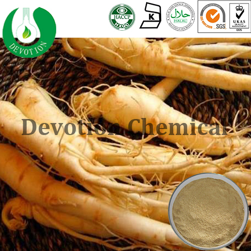 Natural from herb/Ginseng Extract- Ginsenosides