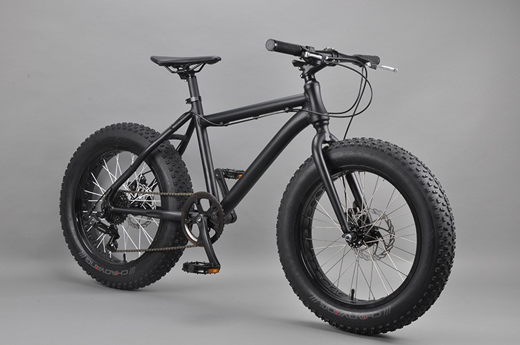 20 inch Fat bike specialized beach cruiser bike