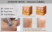 Fat Dissolving/RF RSWT Body Slimming System