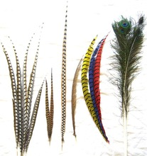 cheap dyed pheasant feathers for carnival
