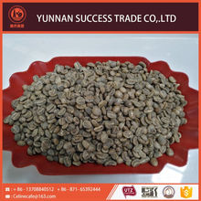China gold supplier top quality export arabica green coffee beans