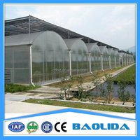 BaoLiDa pc shed greenhouse hot-dip galvanized steel pipe structure for roses