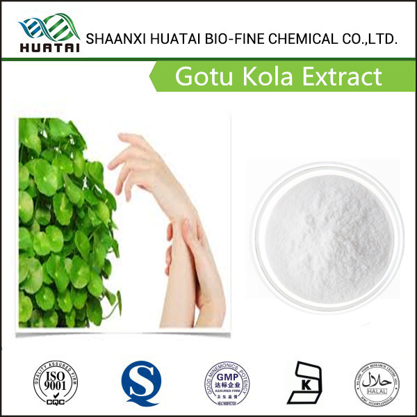 Hydrocotyle asiatica extract Asiaticosides powder