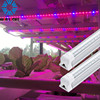 China manufacturer vertical farm hydroponic system epistar led grow light with clip