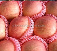 Fuji apple best quality low price