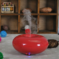 2013 Mini household pest repellent spa mist humidifier