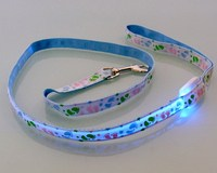 Popular special cheap dog collar led collar pet collar