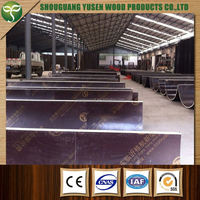 construction material commercial round column film faced plywood manufacturer