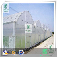 Greenhouse Insect Netting/Greenhouse antiinsect net