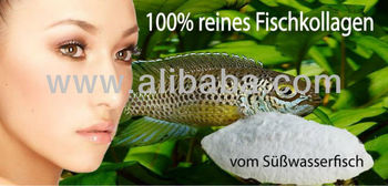 Fish Collagen from Fresh Water Fish Food Grade