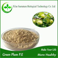 Greengage fruit /Green Plum Powder with Brix65%-70% Acid40%-45%