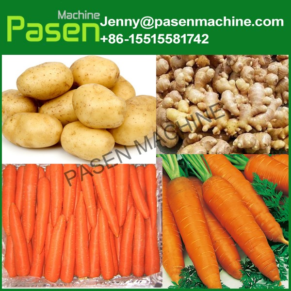 Automatic brush type cassava/patota/carrot/yam/taro washing peeling machine