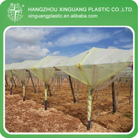 Grape Application UV Protection Yellow Greenhouse