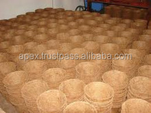 growing coconut coir pot hydroponically