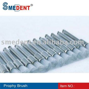 Dental Prophy Brush